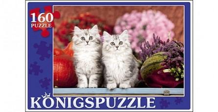 Купить KÖNIGSPUZZLE Пазлы Konigspuzzle. Пушистые котята , 160 элементов [ПК160-5839/РК], Königspuzzle, Картон