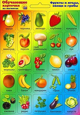 Купить РЫЖИЙ КОТ Обучающие карточки на магнитах «Фрукты и ягоды. Овощи и грибы» [ИН-8881], Обучающие материалы и авторские методики для детей